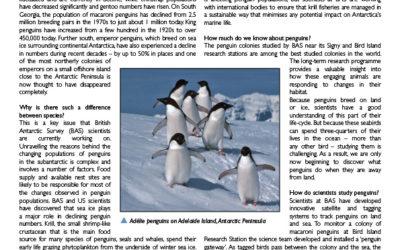 Penguins briefing thumbnail