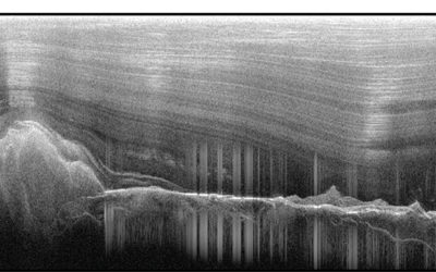 Images of the ice-covered Gamburtsev Mountains revealed water-filled valleys, as seen by the cluster of vertical lines in this image (Tim Creyts, University of Columbia)
