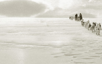 Sepia photo of a dog sled on the ice being pulled towards the horizon