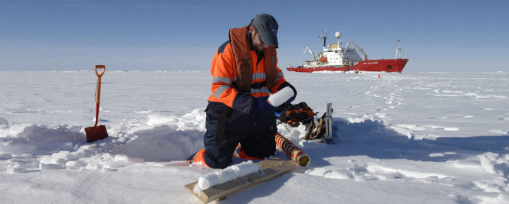 British Antarctic Survey scientist Ted Maksym studies an ice core taken through first year sea ice in the Bellingshausen Sea during the JR240 ICEBell cruise on RRS James Clark Ross (seen in the background