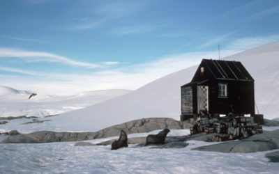 This small refuge hut was built in 1956 and occupied briefly on several occasions including the 1957 winter. It was removed during the 1995-96 season to the Falkland Islands Museum in Stanley