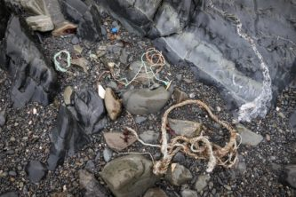 Plastic debris on a beach at Bird Island