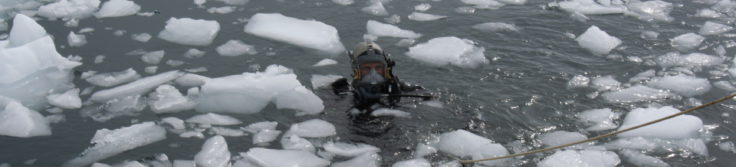 Diver in the water close to Rothera Station, Antarctica