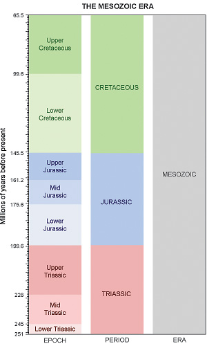 Geological Time Scale - Mesozoic Era