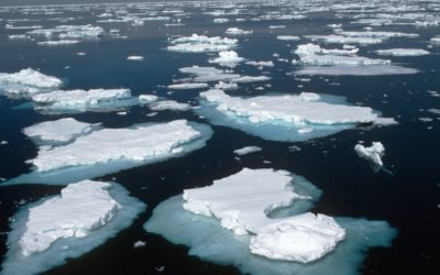 Pack ice in the Weddell sea