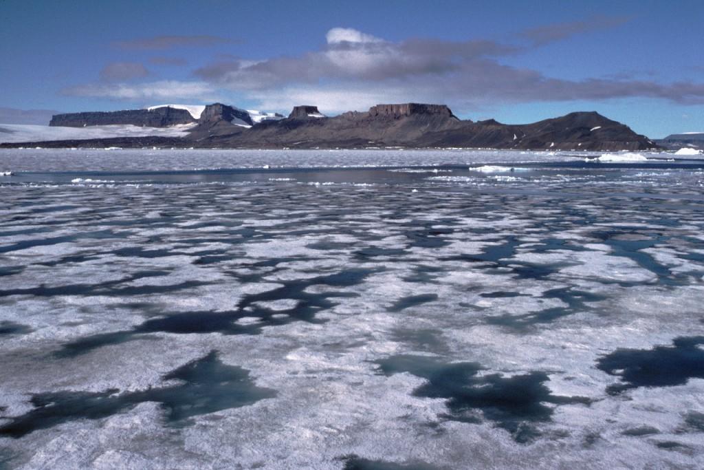 Melting sea icewith melt pools and snow-free terrain, Antarctic Peninsula.
