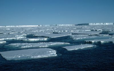 Pack ice infront of the Brunt Ice Shelf