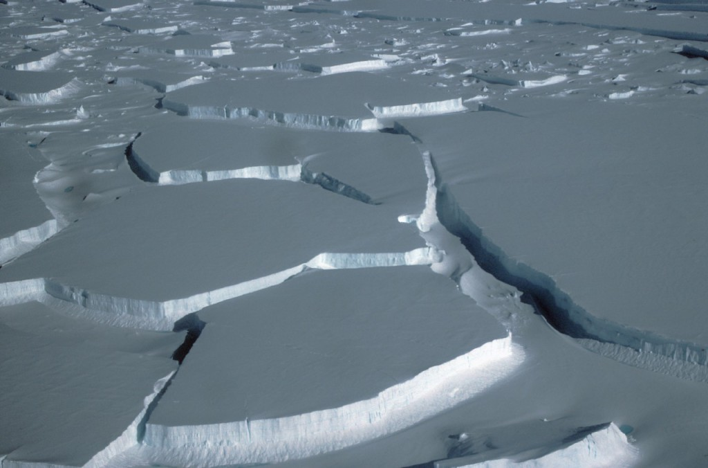 The break up of Wilkins Ice Shelf
