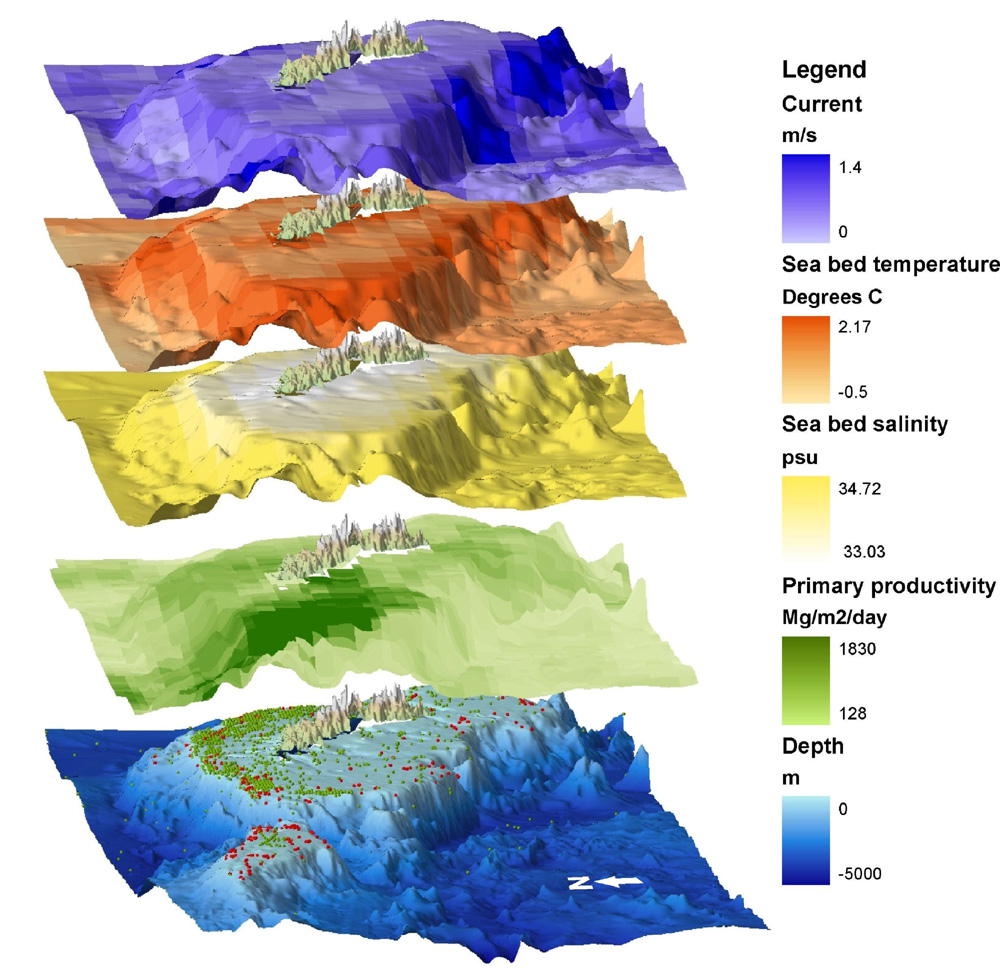Layers of information that will be available in the interactive GIS model of South Georgia including seabed current flow, temperature and salinity, primary production, bathymetry and biodiversity data.