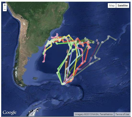 Petrel monitoring (Credit: Google, NASA, TerraMetrics)