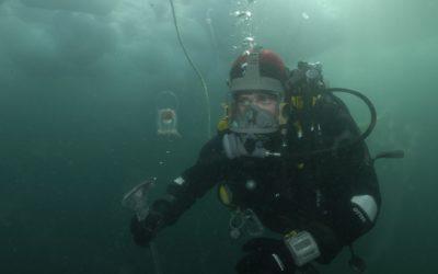 A diver under the sea