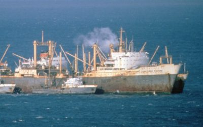 Soviet factory fishing ship (middle) with two trawlers in the foreground and a cargo ship tied behind
