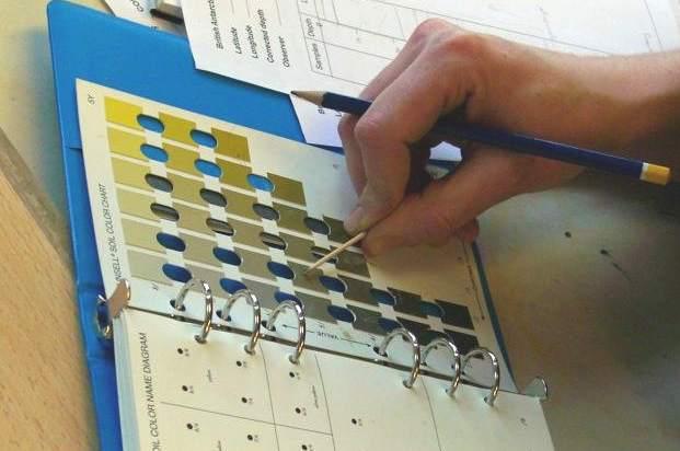 Marine geologist describing sediment core using a Munsell Colour Chart