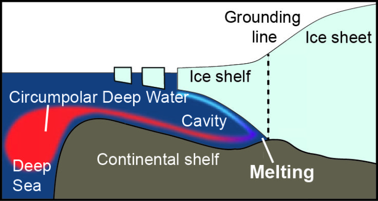 Diagram illustrating how Circumpolar Deep Water flows onto the continental shelf and drives high melt rates at the grounding line of glaciers in the Amundsen Sea Embayment.