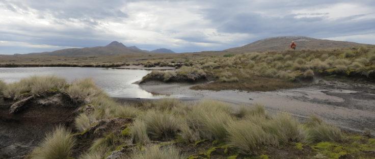 Fieldwork, Isla Hermite, Cape Horn
