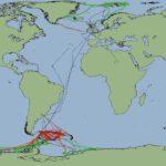 Geophysics Data Portal