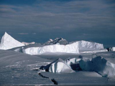 Icescene