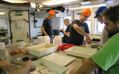 AIMS Project scientists working in the wet laboratory on-board RRS James Clark Ross
