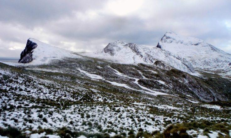 A snowy September day on Bird Island (Siân Tarrant)