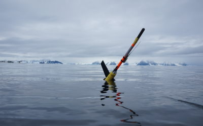 Ocean glider deployed in Antarctica.  Photo: Damien Guihen