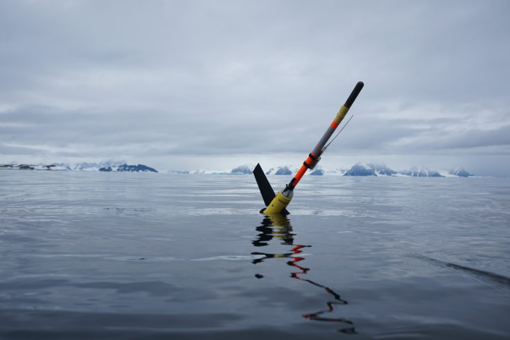 Ocean glider deployed in Antarctica. Photo: Damien Guihen