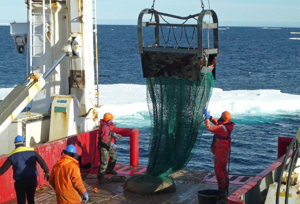 Recovery of the Agassiz trawl onboard Cruise JR179 in the Amundsen Sea. Photograph by Rob Larter (British Antarctic Survey)