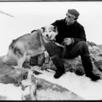 Ivan Mackenzie Lamb (biologist) and Dainty (dog) at Hope Bay, Base D, 1945. Until the mid-1970s sledging with dogs was the primary means for scientists and surveyors to get to their field sites, with increasing support from aircraft. (Photographer: Ivan Mackenzie Lamb; Archives ref: AD6/19/1/D196).