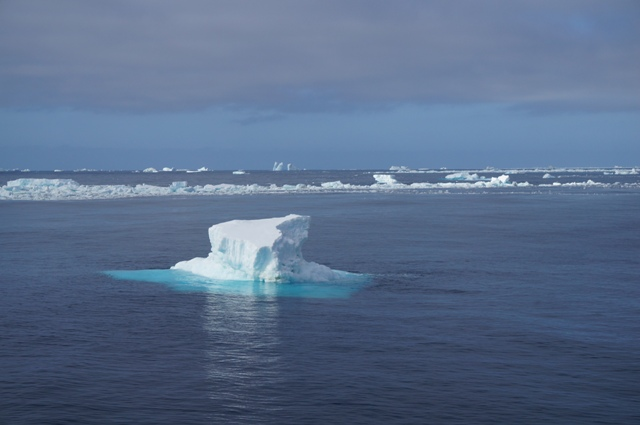 Icebergs and broken sea ice