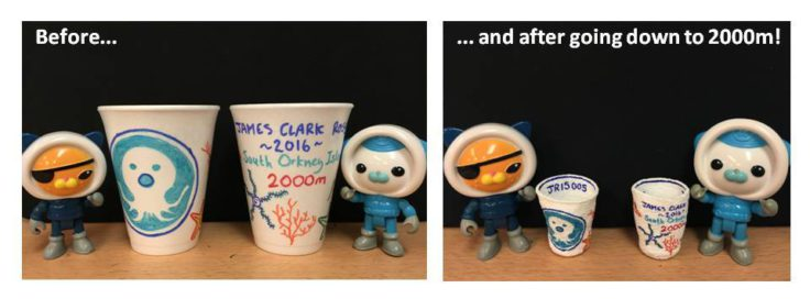 Polystyrene cups before & after we sent them 2000m deep, attached to one of our sampling instruments.