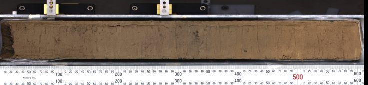 The uppermost section of a sediment core recovered from a submarine mount in the Amundsen Sea, West Antarctica. Scale bar is in mm