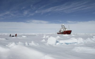 Scientists return to RRS James Clark Ross during the JR240 ICEBell Cruise in the Weddell Sea