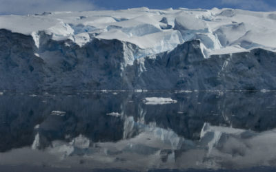 Sheldon Glacier ice front reflected in the glassy waters of Ryder Bay, Adelaide Island, Antarctica.