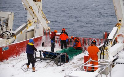 Epibenthic sledge on the RRS James Clark Ross in the Bellingshausen Sea, Antarctica