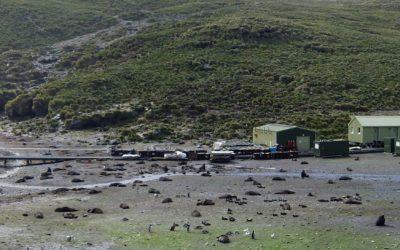 Bird Island research station panorama with Antarctic fur seals