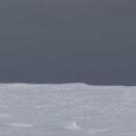 GPR survey on the Brunt Ice Shelf