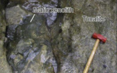 A close up of a rock.