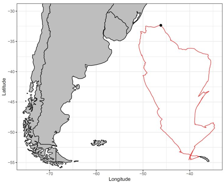 Sitka Wandering Albatross Tracking Image