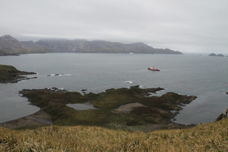 RRS James Clark Ross arrives at Bird Island